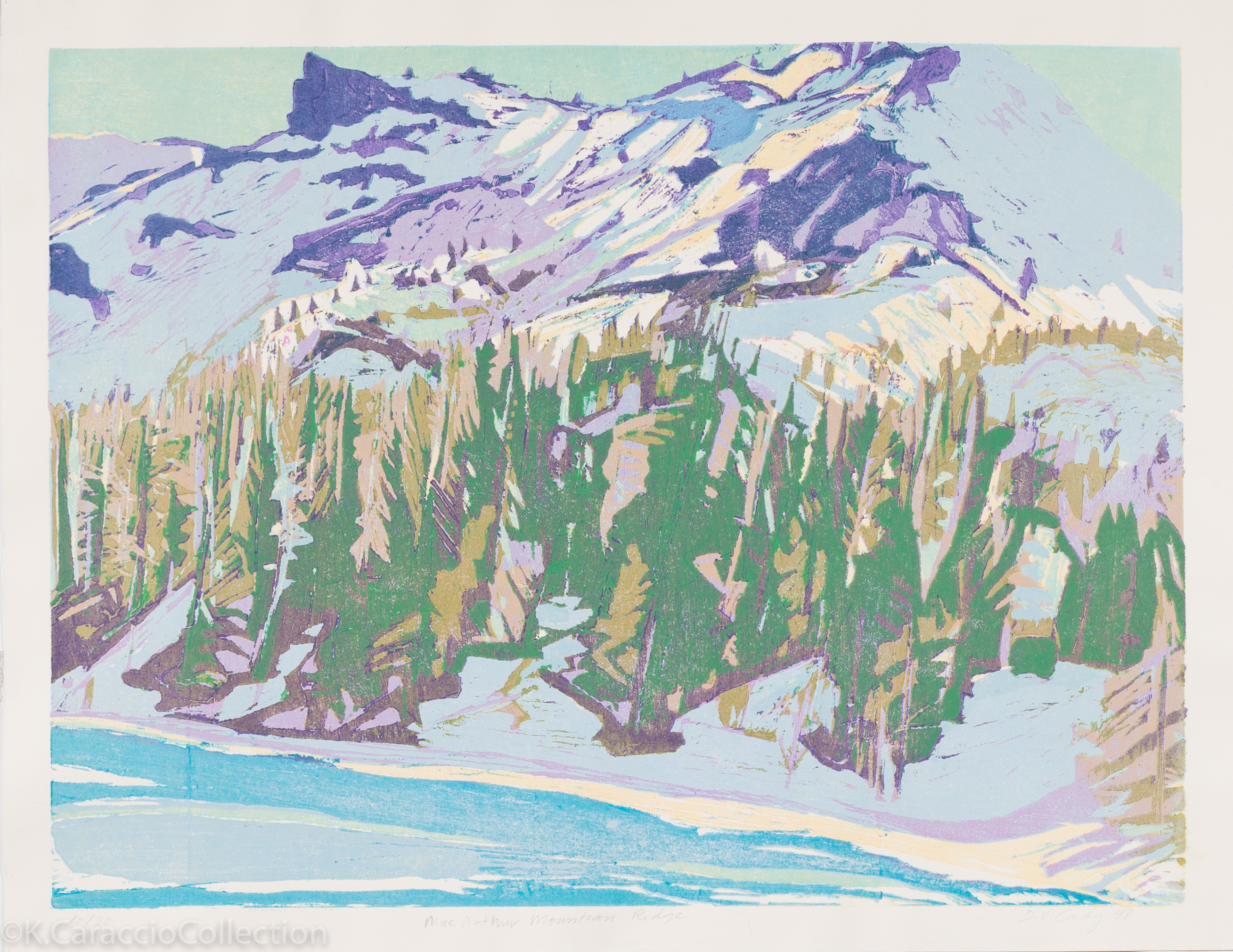 MacArthur Mountain Ridge, 1994