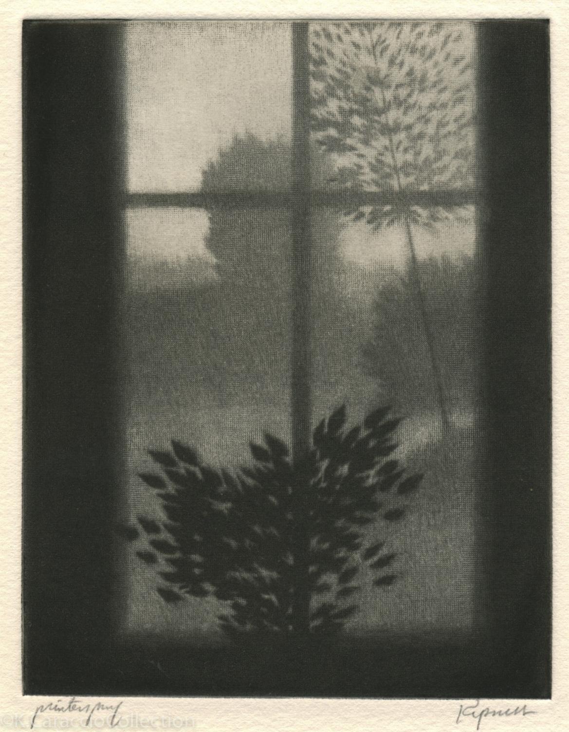 Kipniss, Robert_WindowWDarkLeaves_1997_M