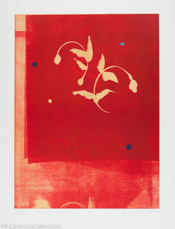 Terra Rosa XXXIX, 1999