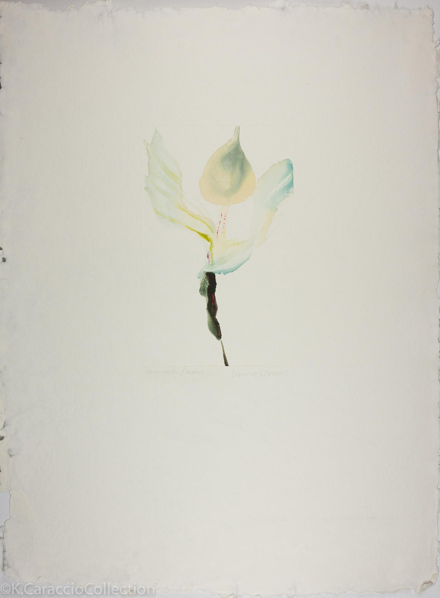 Flower/Bali, 1981