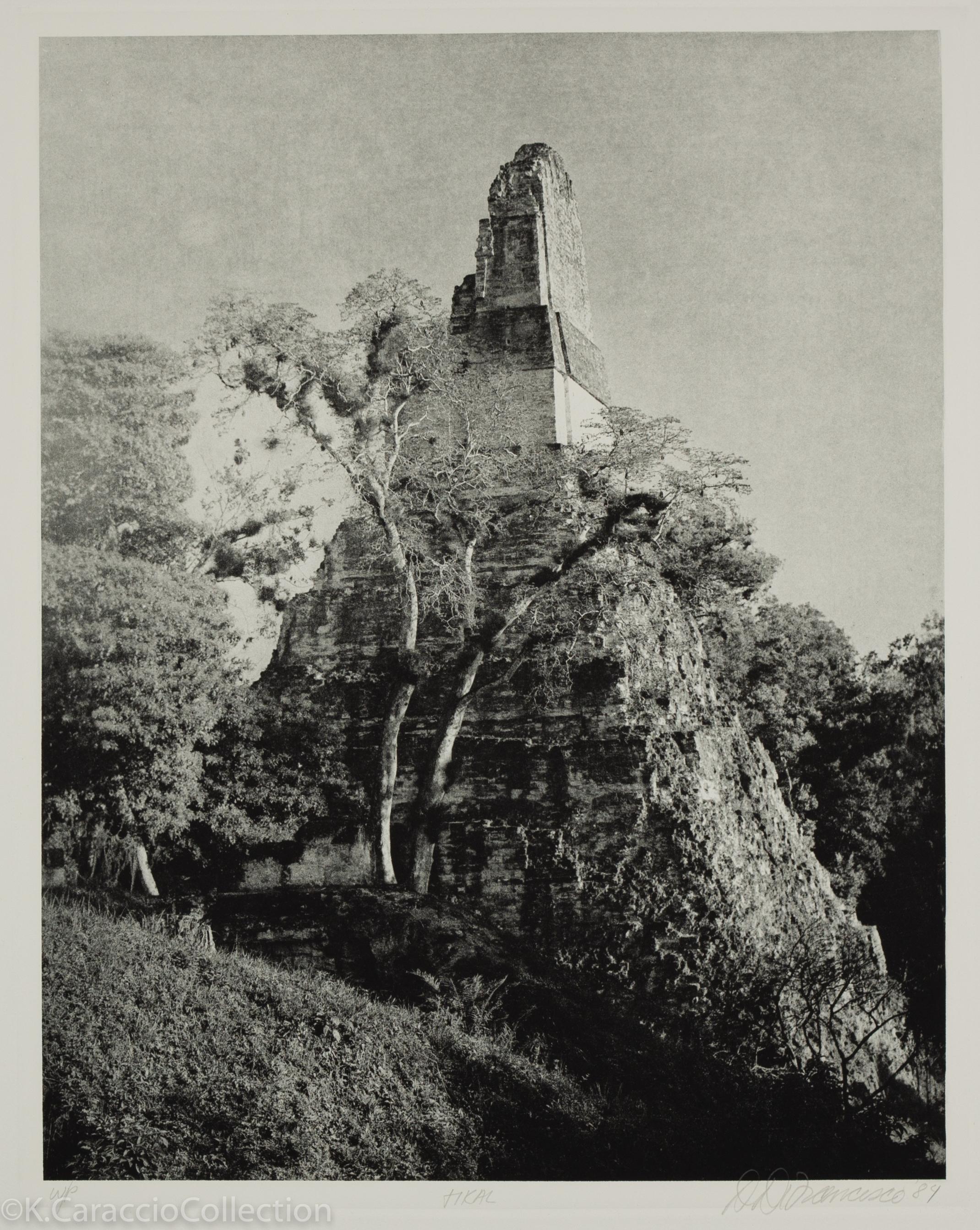 Tikal, 1984