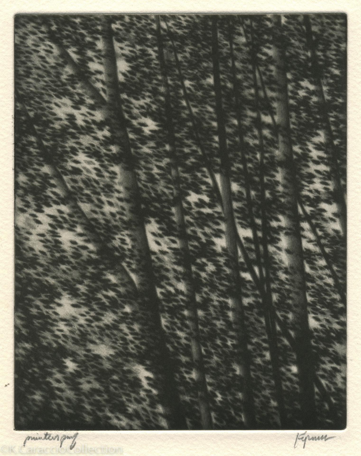 Fragments At Morning, 1999