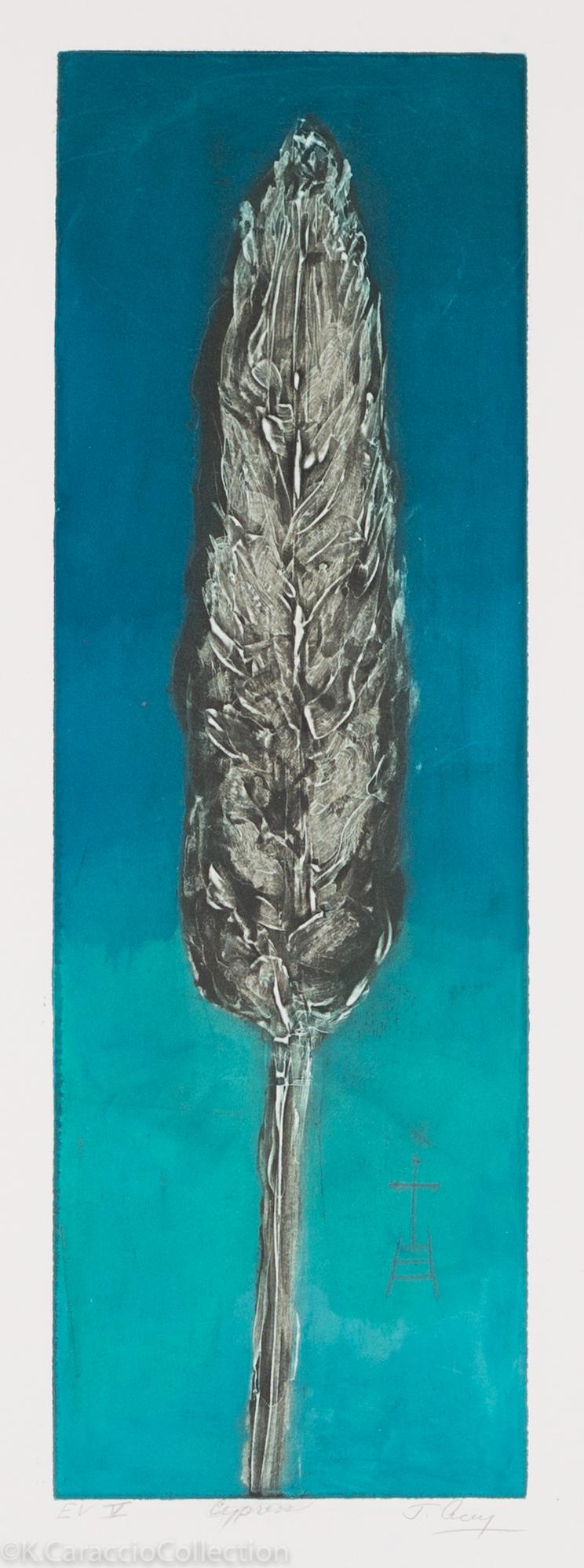 Cypress, 2007