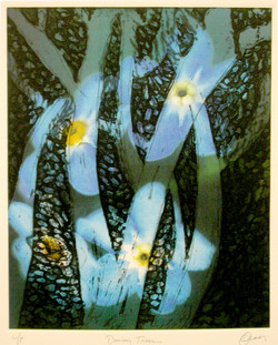 Dancing Trees, 2002