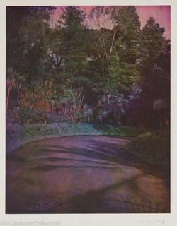 Lotus Hand-Night Coming, 1985