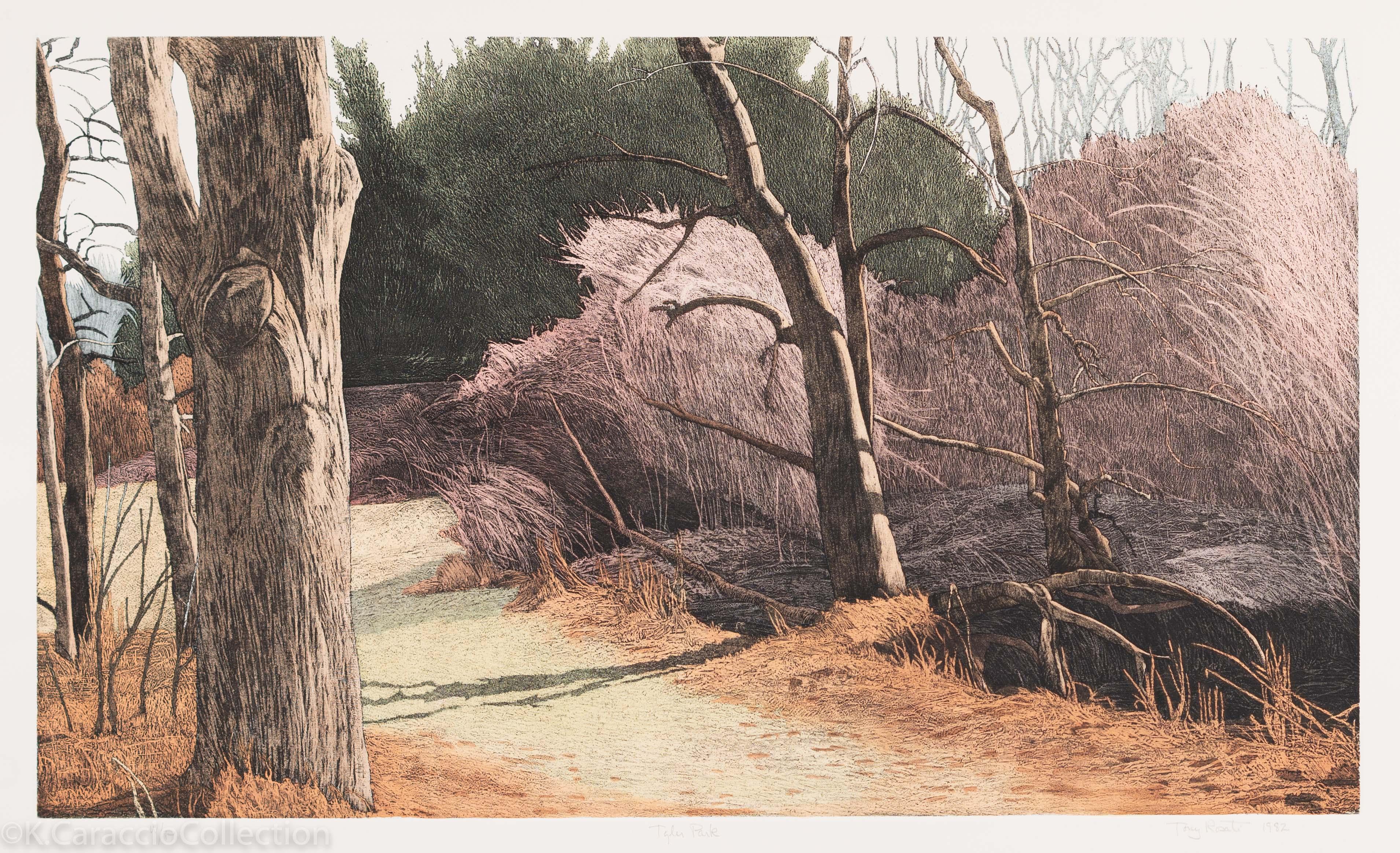 Tyler Park, 1982