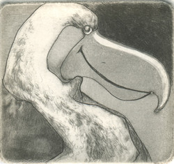 Dodo, 2008