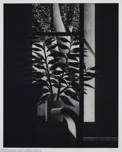 Window with Bench and Tree, 1999