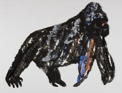 Gorilla, 1985