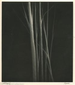 Incandescence, 2000