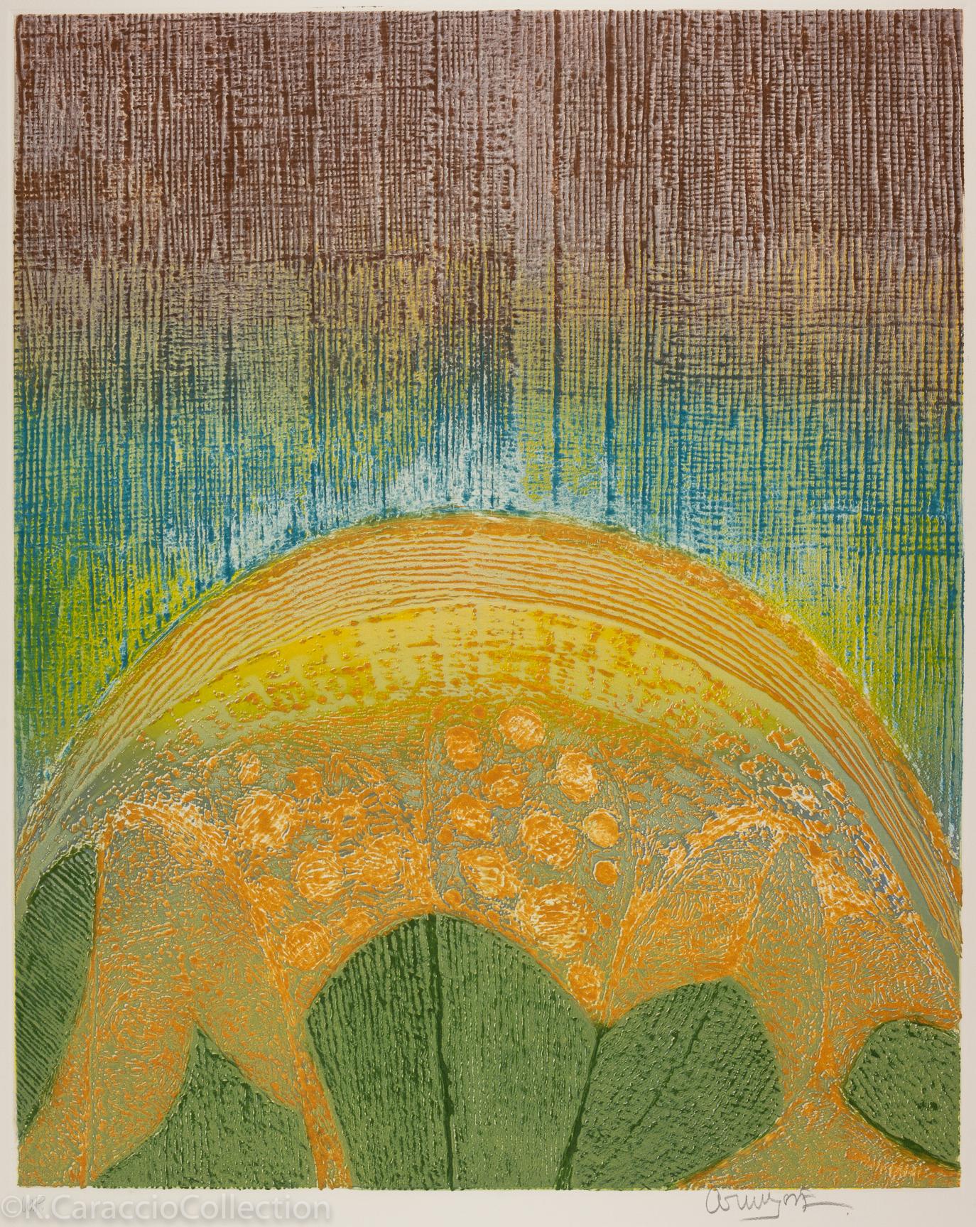Sunflower, 1982