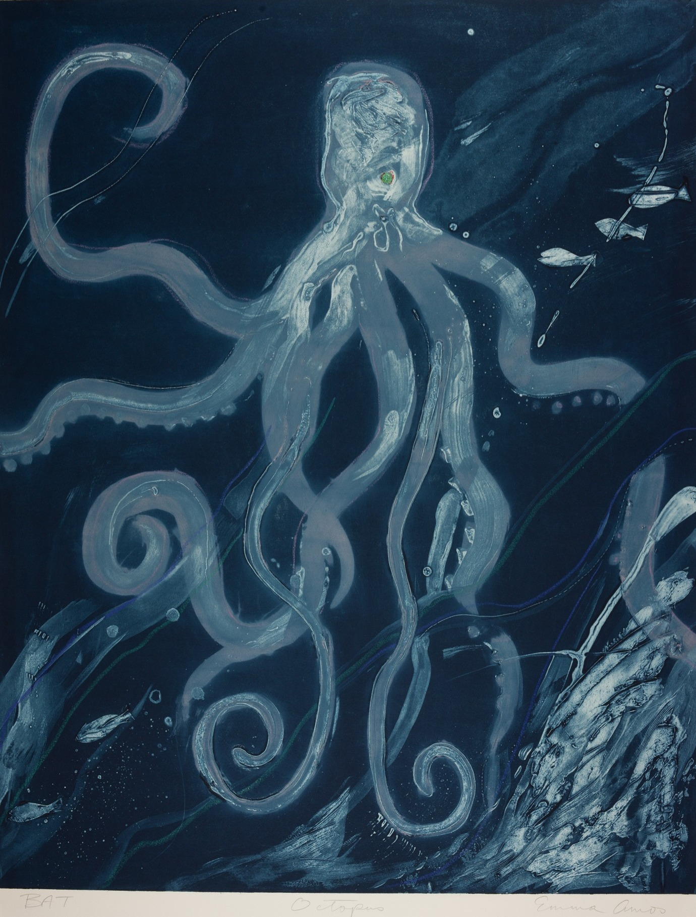 Octopus, 1987