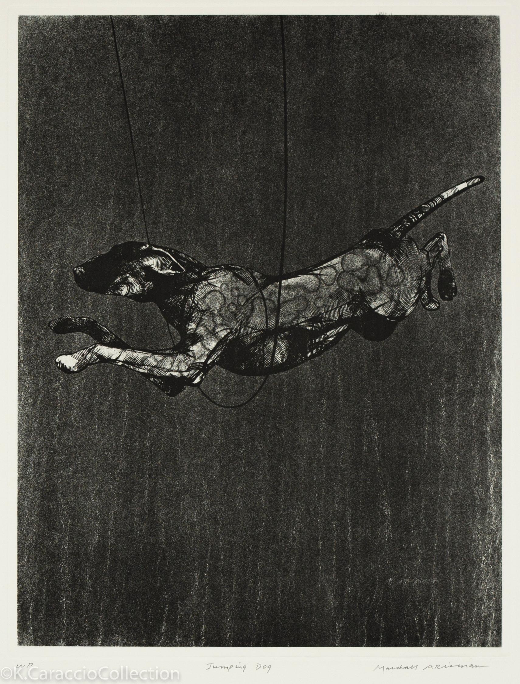 Jumping Dog, 1993