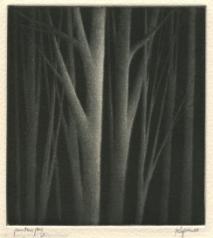 Small Nocturne, 2000