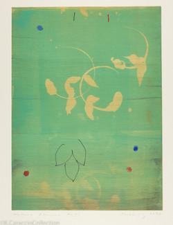 Natura Obscura XLVI, 1998
