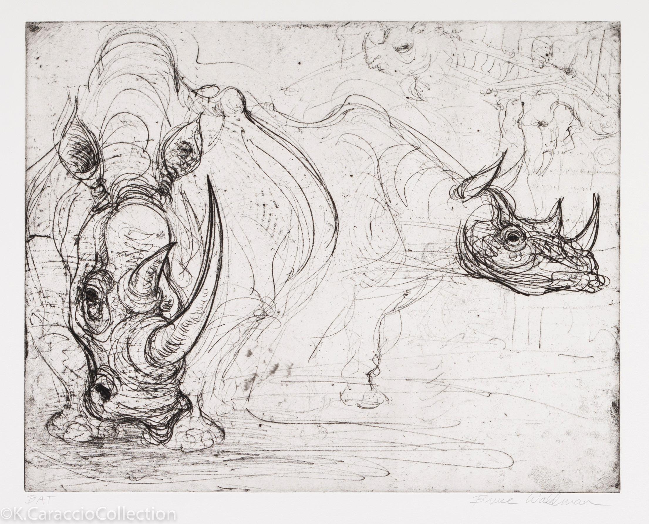 """""""Rhinos"""", 2007"""