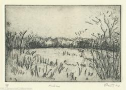 Meadow, 1990