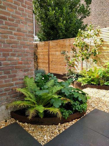 Tuinontwerp - Blossom&Ferns