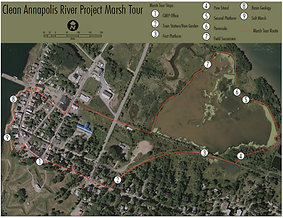 Annapolis Marsh Tour Map.png