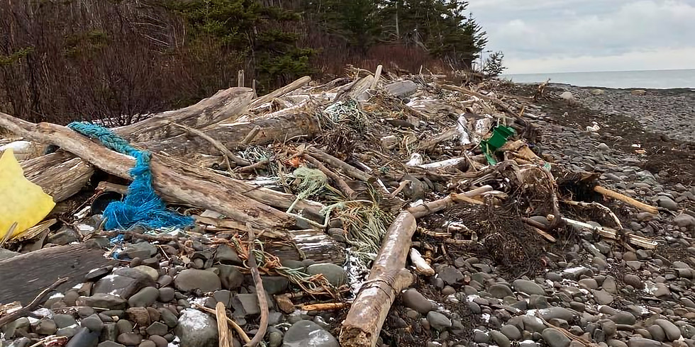 Litchfield Beach Clean
