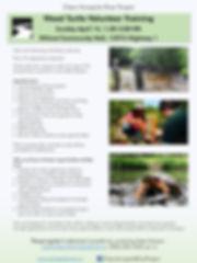 Wood Turtle Volunteer Training 2019.jpg