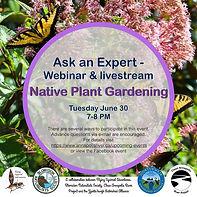 Webinar_Native Plant Gardening.001.jpg