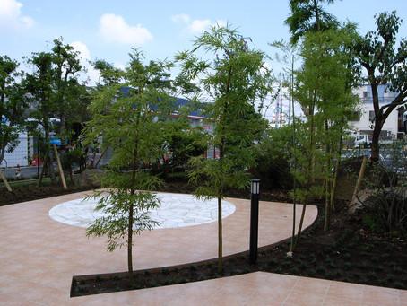 庭の植栽の緑は、病気や怪我すら回復を早める!