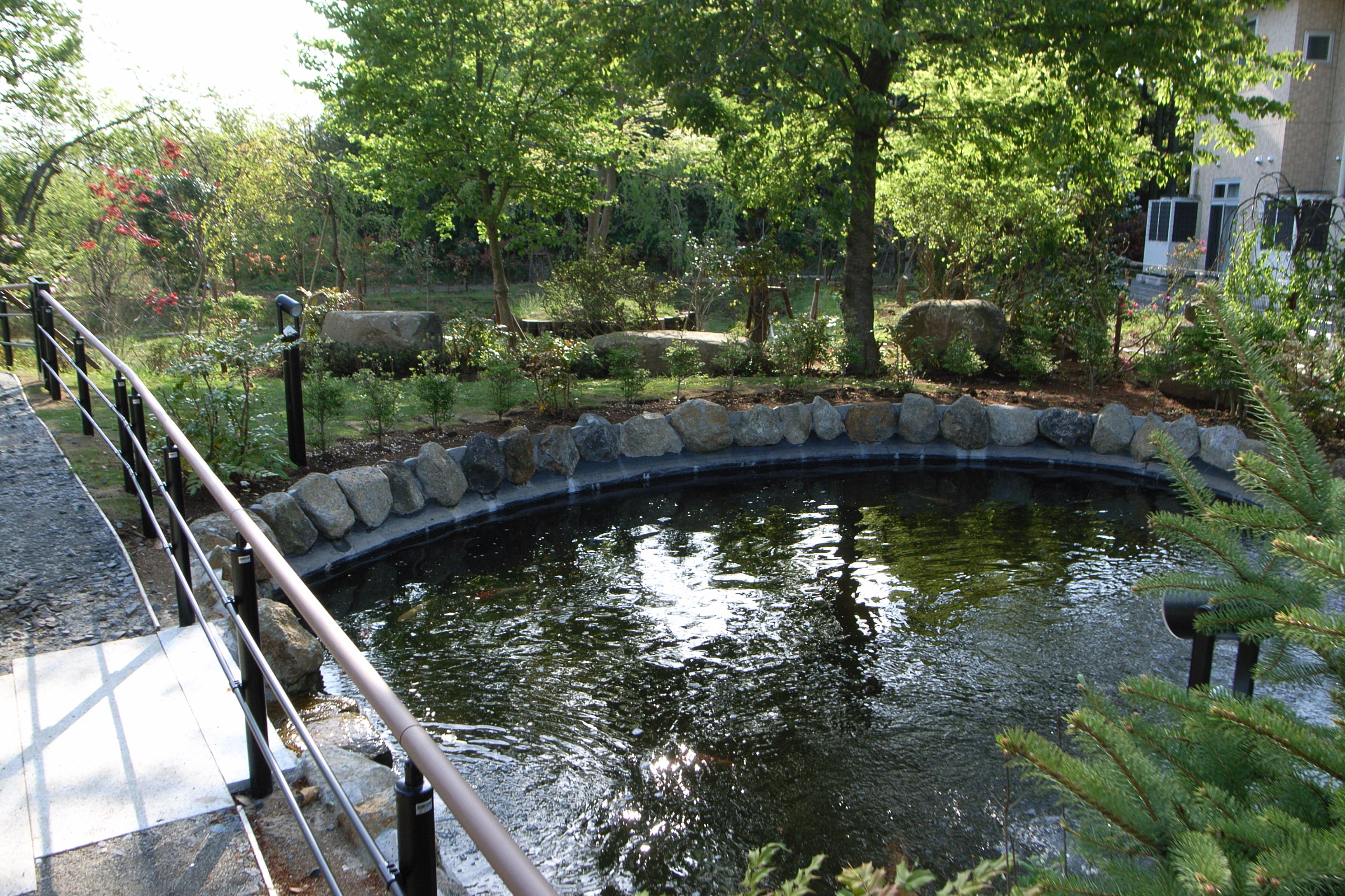 老人ホームの池