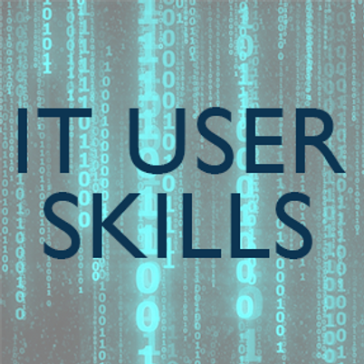 Certificate in IT user skills