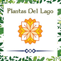 Plantas del lago.jpg