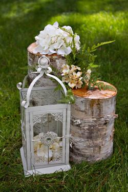 Cream Lantern/Birch