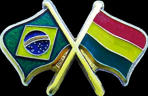 BOTON BRASIL X BOLIVIA