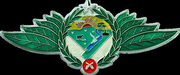 BREVÊ PMRS POLÍCIA AMBIENTAL