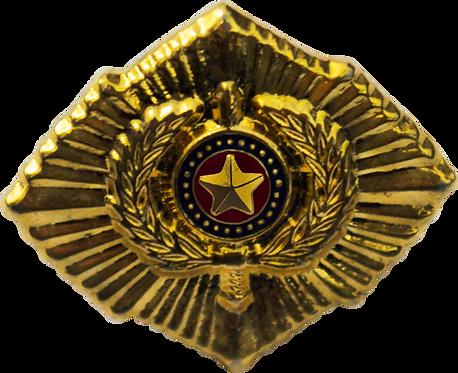 BOTON C.S.P.-CURSO SUPERIOR DA POLICIA
