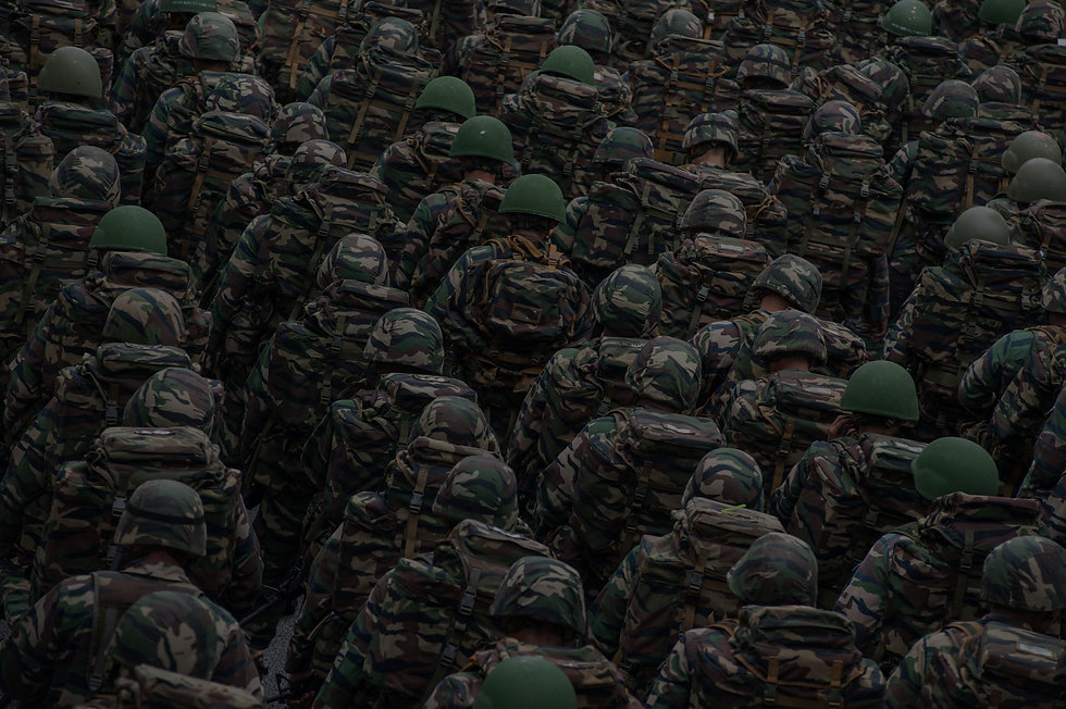 Army%252520Soldiers%252520At%252520Parad
