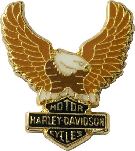 BOTON AGUIA HARLEY DAVIDSON