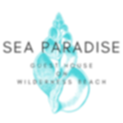 Logo 13 PNG.png
