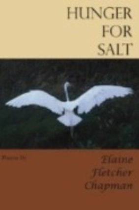 Hunger%25252525252520for%25252525252520Salt%25252525252520Front-Cover_edited_edited_edited_edited_ed