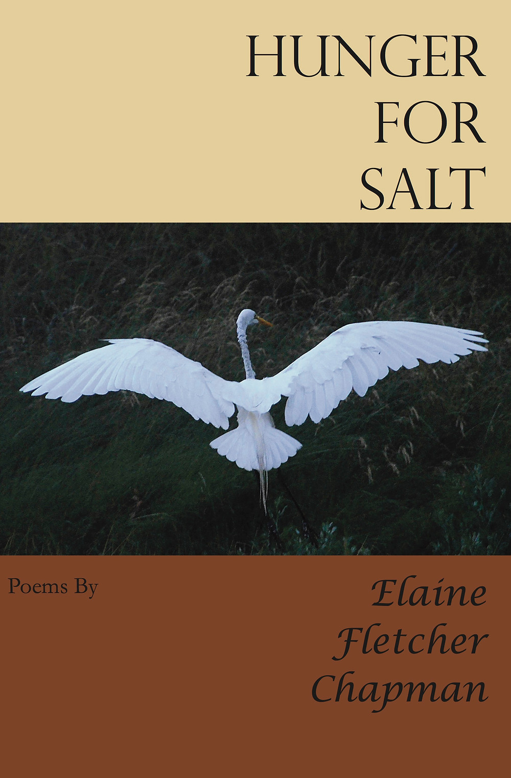 Hunger for Salt Front-Cover