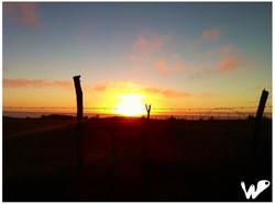 Sunset, by Camila Ostornol