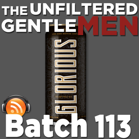 Batch 113: Lord Hobo Glorious Pale Ale & Home-brewed Beer Science