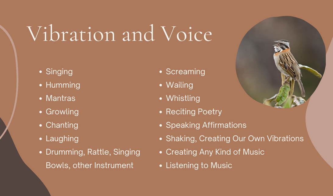 Vibration and Voice