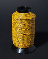 yellow and black.jpg