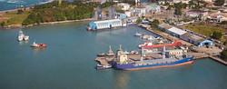 transport aloe vera forever