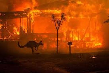 Australie.jpg