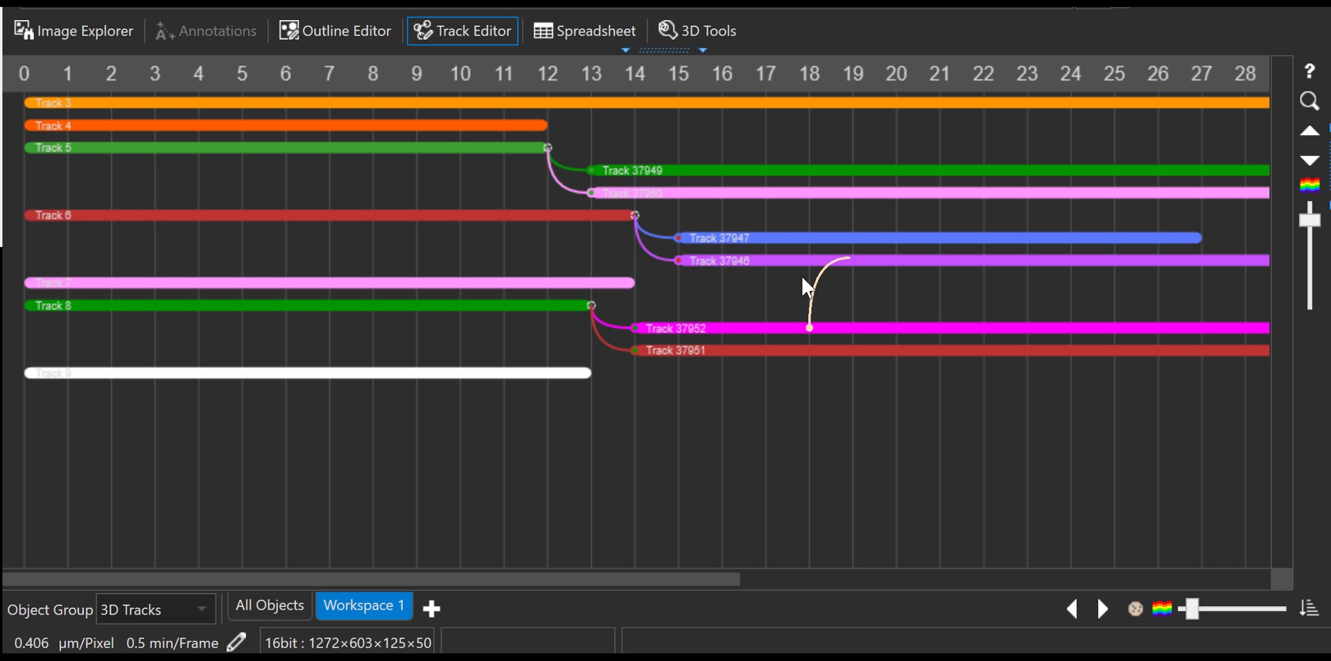 Track and Lineage Editing