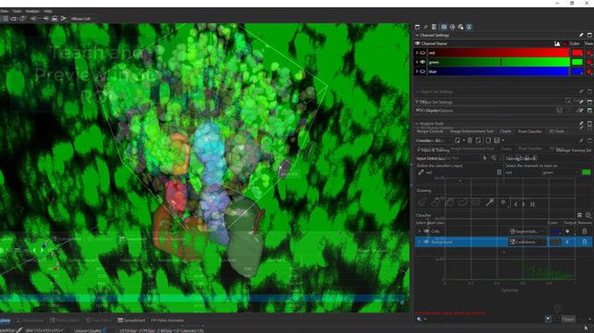 Annotate regions with Magic Wand tool in 2D