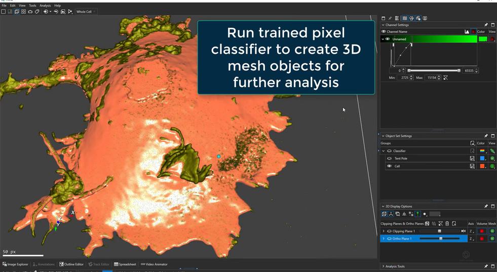 Pixel Classifier, tent pole, 3D results