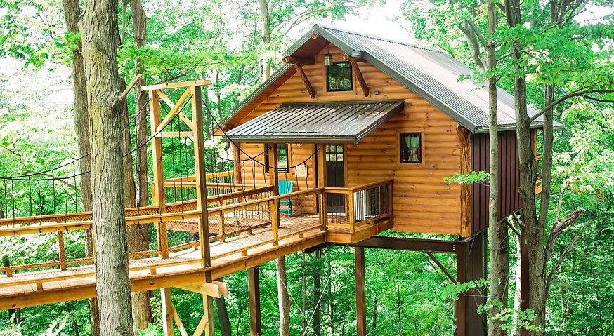 tree-house-5-exterior-slide.jpg