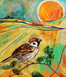 Tree Sparrow for Red67